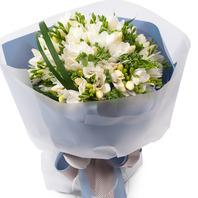 화이트후리지아꽃다발