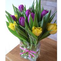 튤립(Tulip)글라스